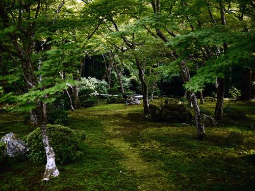 kyoto-enkouji.JPG