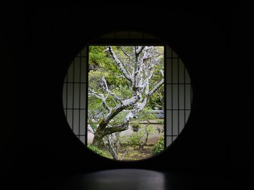 kyoto-unryuin-01.jpg